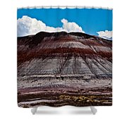 Painted Desert #5 Shower Curtain
