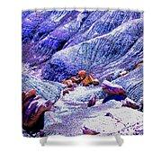 Painted Desert With Petrified Wood - Arizona Shower Curtain