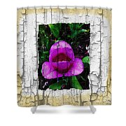 Painted Flower With Peeling Effect Shower Curtain