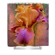Painted Goddess - Iris Shower Curtain