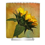 Painted Golden Beauty Shower Curtain