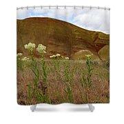 Painted Hills White Wildflowers Shower Curtain