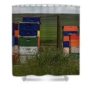 Painted Hives Shower Curtain