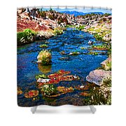 Painted Hot Creek Springs Shower Curtain