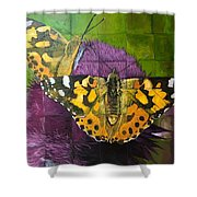Painted Lady Butterflies Shower Curtain