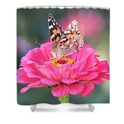 Painted Lady On Red Zinnia 3  Shower Curtain