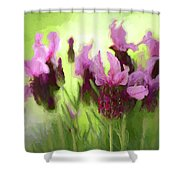 Painted Lavender By Kaye Menner Shower Curtain