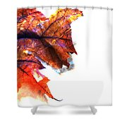 Painted Leaf Series 1 Shower Curtain