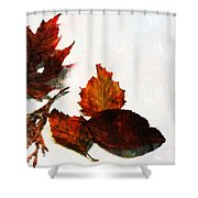 Painted Leaf Series 5 Shower Curtain