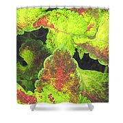 Painted Leaves Shower Curtain