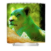 Painted Lion Shower Curtain