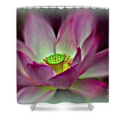 Painted Lotus Shower Curtain