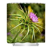 Painted Milk Thistle Shower Curtain