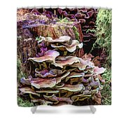 Painted Mushrooms Shower Curtain
