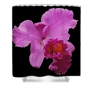 Painted Orchid Shower Curtain