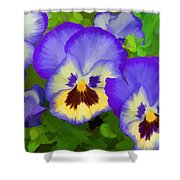 Painterly Pansies Shower Curtain