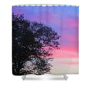 Painted Pink Sky Shower Curtain