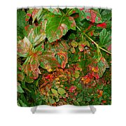 Painted Plants Shower Curtain