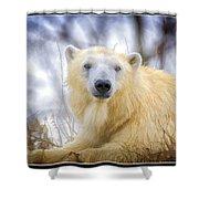 Painted Polar Bear  Shower Curtain