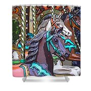 Painted Ponies Shower Curtain
