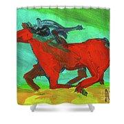 Painted Ponies - Spirit Rider Shower Curtain
