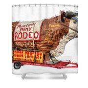 Painted Pony Rodeo Lake George Shower Curtain
