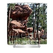 Painted Rock 2 Shower Curtain
