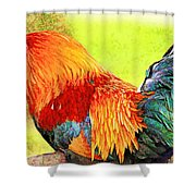Painted Rooster Shower Curtain
