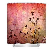 Painted Skies 2 Shower Curtain