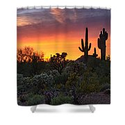 Painted Skies Of The Sonoran Desert Shower Curtain
