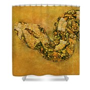 Painted Snake Shower Curtain