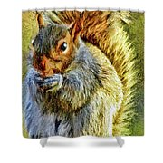 Painted Squirrel  Shower Curtain
