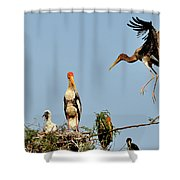 Painted Stork  Shower Curtain