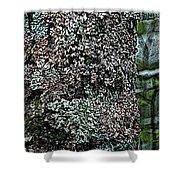 Painted Treebark Woodcut Shower Curtain