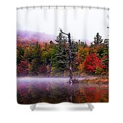 Painted Trees Shower Curtain