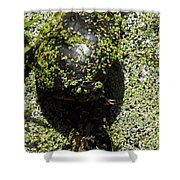 Painted Turtle Camouflague Shower Curtain