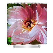 Painted Velvet Petals Shower Curtain