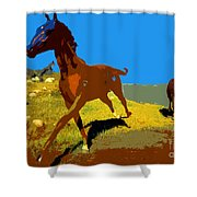 Painted War Horses Shower Curtain