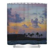 Painterly Shower Curtain