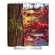 Painterly Rendition Of Red Leaves And Tree Trunk In Autumn Shower Curtain