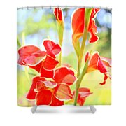 Painter's Delight Shower Curtain