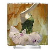 Painting A Ballet Dream Shower Curtain