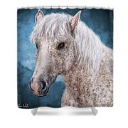 Painting Of A Brindle Horse With White Coat Shower Curtain
