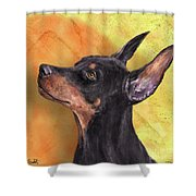 Painting Of A Cute Doberman Pinscher On Orange Background Shower Curtain