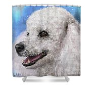 Painting Of A White Fluffy Poodle Smiling Shower Curtain