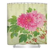 Painting Of Peonies Shower Curtain