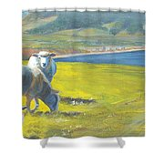 Painting Of Sheep On A Cliff Top Shower Curtain