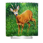 painting of young deer in wild landscape with high grass. Eye contact. Shower Curtain