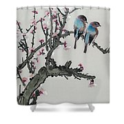 Pair Of Birds On A Cherry Branch Shower Curtain