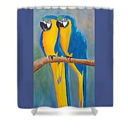 Pair Of Blue And Gold Macaws Shower Curtain